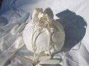 Brauttasche/ Beutel und