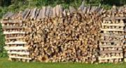 Brennholz EUR 85,--/