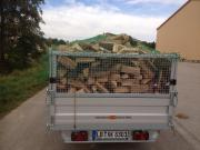 Brennholz Kaminholz Buche