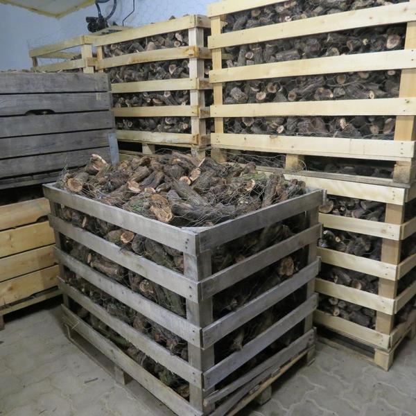 brennholz rebknorzen rebenknorzen zum grillen und brennen in wachenheim holz kaufen und. Black Bedroom Furniture Sets. Home Design Ideas