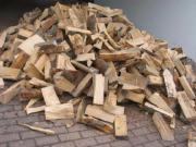 Brennholz trocken Buche
