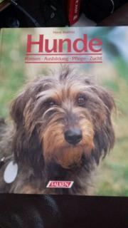 Bücher über Hundeerziehung