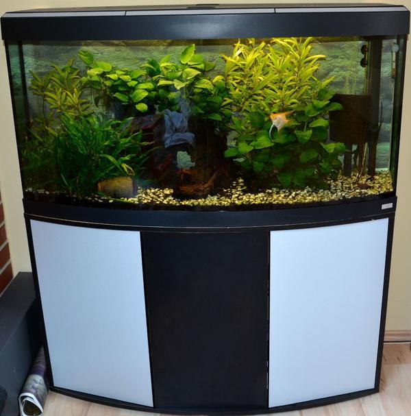 Großartig Panorama Aquarium kaufen - Panorama Aquarium verkaufen - dhd24.com CG56