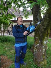Gartenarbeiten Baumfällungen oder Baumeinkürzungen aller