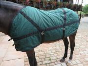 Grün-schwarze Pferde-Decke