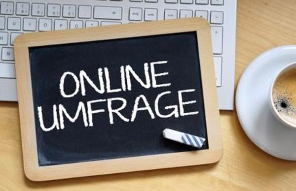 Heimarbeit bundesweit Online-Umfragen ausfüllen ca 4