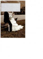 Hochzeitskleid - Hochzeitsweste