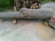 Holzstamm Eiche Baumstamm