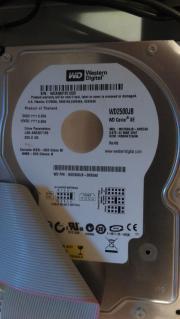 IDE Festplatte 250