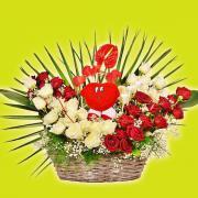 Individuelle Blumen Kombinationen