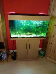 Juwel Aquarium 140l