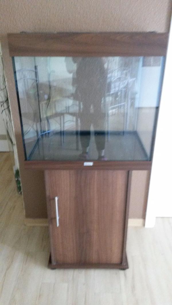 aquaristik in hanau bei deinetierwelt. Black Bedroom Furniture Sets. Home Design Ideas