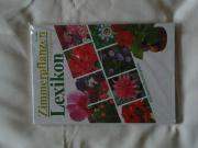 Lexikon Zimmerpflanzen