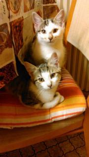 Mia und Mila