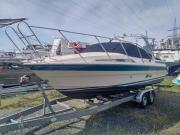 Motorboot Windy 8000