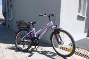 Pegasus Mädchen-Fahrrad