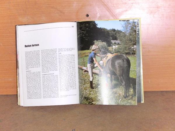 Ponys Buch