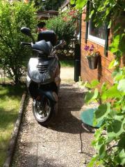Roller Rex Torino