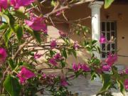 Schönes, privates Ferienhaus