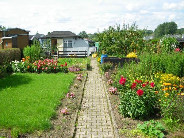 top gepflegter kleingarten g nstig abzugeben in chemnitz. Black Bedroom Furniture Sets. Home Design Ideas