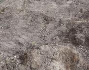 TOP sauberer Mutterboden