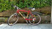 UNIVEGA Fahrrad mit